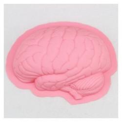 Formă de silicon Creier
