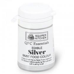 Dust Metalic Argint SK 5g