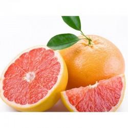 Joypaste grepfruit Pompelo...