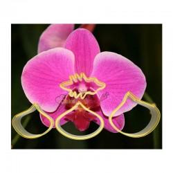 Set 4 decupatoare Orhidee -...